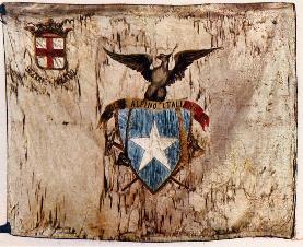 La prima bandiera della Sezione di Milano. Dal 1873 ad oggi rappresenta la fedeltà ai valori ed agli ideali che informano l'impegno di quanti appartegno ed operano nel nostro Sodalizio.
